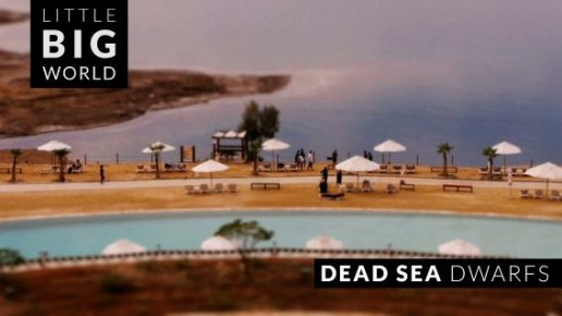 Dead Sea Dwarfs